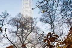 <h3>Petřínská rozhledna </h3><p>Jan Hamaďák: 'Pražská Eiffelovka v podzimním mlžným oparuL</p><hr /><a href='http://www.facebook.com/sharer.php?u=http://www.milujuprahu.cz/2013/11/honza-ma-prahu-v-oku/' target='_blank' title='Share this page on Facebook'><img src='http://www.milujuprahu.cz/wp-content/themes/twentyten/images/flike.png' /></a><a href='https://plusone.google.com/_/+1/confirm?hl=en&url=http://www.milujuprahu.cz/2013/11/honza-ma-prahu-v-oku/' target='_blank' title='Plus one this page on Google'><img src='http://www.milujuprahu.cz/wp-content/themes/twentyten/images/plusone.png' /></a><a href='http://www.pinterest.com/pin/create/button/?url=http://www.milujuprahu.cz&media=http://www.milujuprahu.cz/wp-content/uploads/2013/11/mp07_039.jpg&description=Next%20stop%3A%20Pinterest' data-pin-do='buttonPin' data-pin-config='beside' target='_blank'><img src='http://assets.pinterest.com/images/pidgets/pin_it_button.png' /></a>