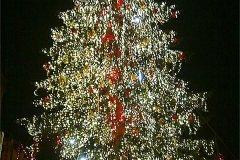 <h3>Staroměstské náměstí 2009</h3><p></p><hr /><a href='http://www.facebook.com/sharer.php?u=http://www.milujuprahu.cz/2016/12/videa-a-fotky-vanocni-stromky-na-staromaku-od-roku-2007-po-dnesek/' target='_blank' title='Share this page on Facebook'><img src='http://www.milujuprahu.cz/wp-content/themes/twentyten/images/flike.png' /></a><a href='https://plusone.google.com/_/+1/confirm?hl=en&url=http://www.milujuprahu.cz/2016/12/videa-a-fotky-vanocni-stromky-na-staromaku-od-roku-2007-po-dnesek/' target='_blank' title='Plus one this page on Google'><img src='http://www.milujuprahu.cz/wp-content/themes/twentyten/images/plusone.png' /></a><a href='http://www.pinterest.com/pin/create/button/?url=http://www.milujuprahu.cz&media=http://www.milujuprahu.cz/wp-content/uploads/2013/12/2009.jpg&description=Next%20stop%3A%20Pinterest' data-pin-do='buttonPin' data-pin-config='beside' target='_blank'><img src='http://assets.pinterest.com/images/pidgets/pin_it_button.png' /></a>