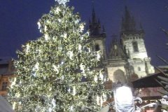 <h3>Vánoční strom 2010 </h3><p>Foto: Tata Lavrenova</p><hr /><a href='http://www.facebook.com/sharer.php?u=http://www.milujuprahu.cz/2016/12/videa-a-fotky-vanocni-stromky-na-staromaku-od-roku-2007-po-dnesek/' target='_blank' title='Share this page on Facebook'><img src='http://www.milujuprahu.cz/wp-content/themes/twentyten/images/flike.png' /></a><a href='https://plusone.google.com/_/+1/confirm?hl=en&url=http://www.milujuprahu.cz/2016/12/videa-a-fotky-vanocni-stromky-na-staromaku-od-roku-2007-po-dnesek/' target='_blank' title='Plus one this page on Google'><img src='http://www.milujuprahu.cz/wp-content/themes/twentyten/images/plusone.png' /></a><a href='http://www.pinterest.com/pin/create/button/?url=http://www.milujuprahu.cz&media=http://www.milujuprahu.cz/wp-content/uploads/2013/12/2010-Tata-Lavrenova.jpg&description=Next%20stop%3A%20Pinterest' data-pin-do='buttonPin' data-pin-config='beside' target='_blank'><img src='http://assets.pinterest.com/images/pidgets/pin_it_button.png' /></a>