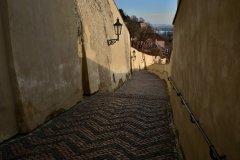 <h3>Zámecké schody</h3><p>Na Štědrý den ráno vyfotila Jana Ježková</p><hr /><a href='http://www.facebook.com/sharer.php?u=http://www.milujuprahu.cz/2013/12/probouzeni-do-stedreho-dne-jany-jezkove/' target='_blank' title='Share this page on Facebook'><img src='http://www.milujuprahu.cz/wp-content/themes/twentyten/images/flike.png' /></a><a href='https://plusone.google.com/_/+1/confirm?hl=en&url=http://www.milujuprahu.cz/2013/12/probouzeni-do-stedreho-dne-jany-jezkove/' target='_blank' title='Plus one this page on Google'><img src='http://www.milujuprahu.cz/wp-content/themes/twentyten/images/plusone.png' /></a><a href='http://www.pinterest.com/pin/create/button/?url=http://www.milujuprahu.cz&media=http://www.milujuprahu.cz/wp-content/uploads/2013/12/DSC_1915.jpg&description=Next%20stop%3A%20Pinterest' data-pin-do='buttonPin' data-pin-config='beside' target='_blank'><img src='http://assets.pinterest.com/images/pidgets/pin_it_button.png' /></a>
