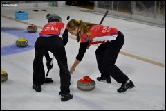 <h3>Curling</h3>