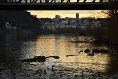 <h3>Pod železničním mostem</h3><p>Foto: Jana Ježková</p><hr /><a href='http://www.facebook.com/sharer.php?u=http://www.milujuprahu.cz/2014/02/po-zime-nezime-jakoby-uz-jaro-klepalo-na-dvere/' target='_blank' title='Share this page on Facebook'><img src='http://www.milujuprahu.cz/wp-content/themes/twentyten/images/flike.png' /></a><a href='https://plusone.google.com/_/+1/confirm?hl=en&url=http://www.milujuprahu.cz/2014/02/po-zime-nezime-jakoby-uz-jaro-klepalo-na-dvere/' target='_blank' title='Plus one this page on Google'><img src='http://www.milujuprahu.cz/wp-content/themes/twentyten/images/plusone.png' /></a><a href='http://www.pinterest.com/pin/create/button/?url=http://www.milujuprahu.cz&media=http://www.milujuprahu.cz/wp-content/uploads/2014/02/DSC_4166.jpg&description=Next%20stop%3A%20Pinterest' data-pin-do='buttonPin' data-pin-config='beside' target='_blank'><img src='http://assets.pinterest.com/images/pidgets/pin_it_button.png' /></a>