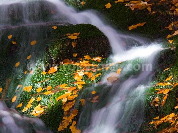 Huťský vodopád - Foto: rokytnice.com