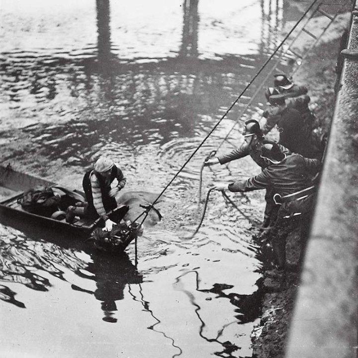 Kůň, který i s nákladem spadl z náplavky v Holešovicích do Vltavy. - Foto: archic prazskeho hasicskeho sboru