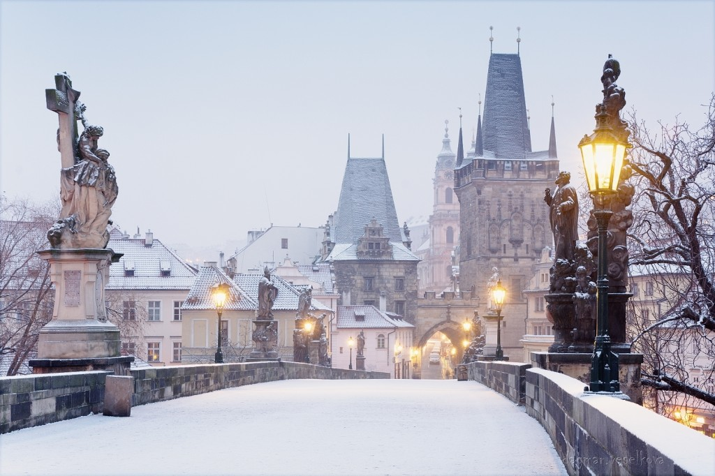 Sněžné ráno - Foto: Dagmar Veselková
