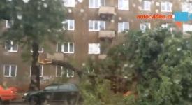 VIDEO: V Sokolovské ulici vyvrátil vítr stromy. Velké větve popadaly na auta