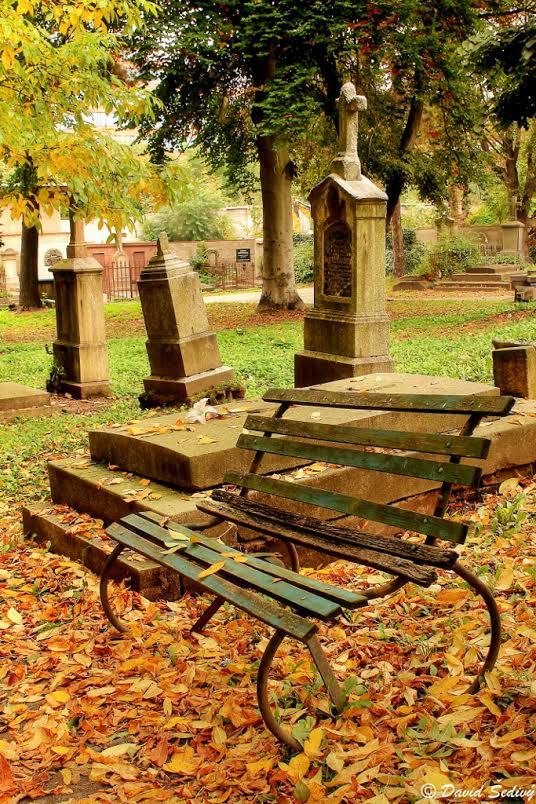 Hřbitov - Foto: David Šedivý