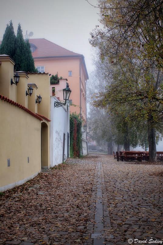 Podzim - Foto: David Šedivý