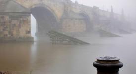 Pražská chlouba – podzimní Kampa Davida Šedivého