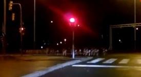 TO PŘEKVAPÍ! Stádo muflonů na přechodu v Praze…