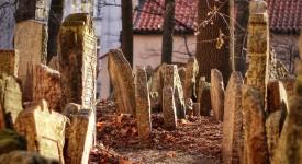 Střípky z Židovského hřbitova Davida Šedivého