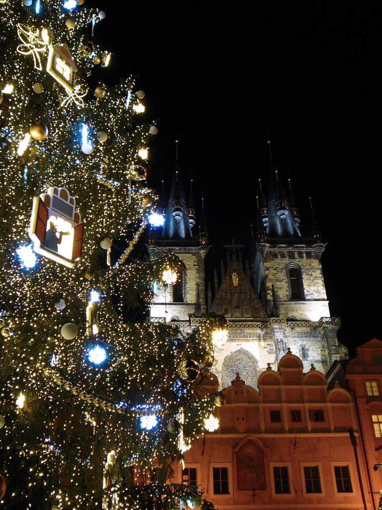 Strom před Týnským chrámem - Foto: Martin Dobrovodský