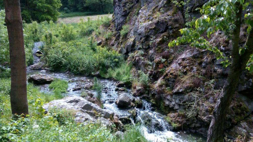 Šárecký potok, který vytéká z vodní nádrže Džbán. - Foto: Martin Dobrovodský