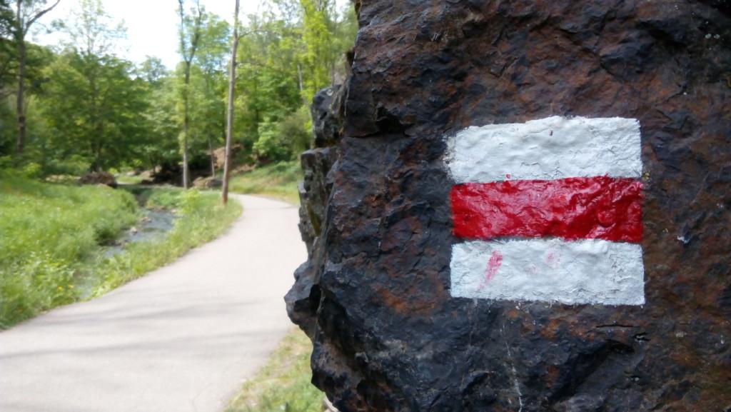 I v údolí Divoké Šárky se stkáme s klasickým turistickým značením. Hlavní cesta vede po červené. - Foto: Martin Dobrovodský
