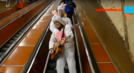 TOP – týden očima Pražanů. Králíci preludující v metru, závod o košiky a zablokovaná Libeň