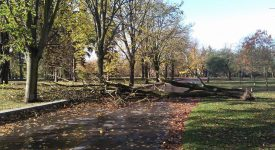 V Praze duje silný vítr. Jeho rychlost přesahuje 100 km/h. Zoo je uzavřená. Tramvaje stojí