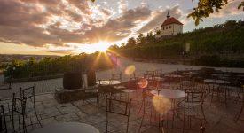FESTIVAL JAK VÍNO: Posílejte záběry z vinobraní v trojské botanické zahradě