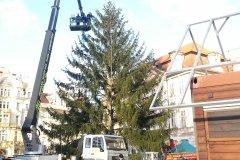 <h3>Vánoční smrk na Staroměstském náměstí</h3><p>- Foto: Tereza Černá</p><hr /><a href='http://www.facebook.com/sharer.php?u=https://www.milujuprahu.cz/vanocni-strom-usazen-svatky-mohou-zacit/' target='_blank' title='Share this page on Facebook'><img src='https://www.milujuprahu.cz/wp-content/themes/twentyten/images/flike.png' /></a><a href='https://plusone.google.com/_/+1/confirm?hl=en&url=https://www.milujuprahu.cz/vanocni-strom-usazen-svatky-mohou-zacit/' target='_blank' title='Plus one this page on Google'><img src='https://www.milujuprahu.cz/wp-content/themes/twentyten/images/plusone.png' /></a><a href='http://www.pinterest.com/pin/create/button/?url=https://www.milujuprahu.cz&media=https://www.milujuprahu.cz/wp-content/uploads/2013/11/20131126_141414.jpg&description=Next%20stop%3A%20Pinterest' data-pin-do='buttonPin' data-pin-config='beside' target='_blank'><img src='https://assets.pinterest.com/images/pidgets/pin_it_button.png' /></a>