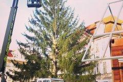 <h3>Vánoční strom na Staromáku</h3><p>Foto: Tereza Černá</p><hr /><a href='http://www.facebook.com/sharer.php?u=https://www.milujuprahu.cz/vanocni-strom-usazen-svatky-mohou-zacit/' target='_blank' title='Share this page on Facebook'><img src='https://www.milujuprahu.cz/wp-content/themes/twentyten/images/flike.png' /></a><a href='https://plusone.google.com/_/+1/confirm?hl=en&url=https://www.milujuprahu.cz/vanocni-strom-usazen-svatky-mohou-zacit/' target='_blank' title='Plus one this page on Google'><img src='https://www.milujuprahu.cz/wp-content/themes/twentyten/images/plusone.png' /></a><a href='http://www.pinterest.com/pin/create/button/?url=https://www.milujuprahu.cz&media=https://www.milujuprahu.cz/wp-content/uploads/2013/11/IMG_20131126_141857.jpg&description=Next%20stop%3A%20Pinterest' data-pin-do='buttonPin' data-pin-config='beside' target='_blank'><img src='https://assets.pinterest.com/images/pidgets/pin_it_button.png' /></a>