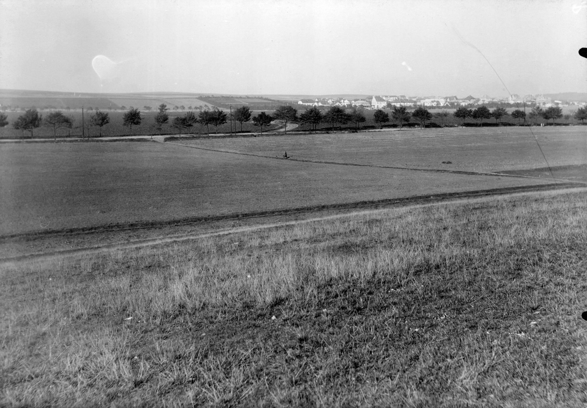Tento snímek z roku 1927 navazuje na předchozí a ukazuje zemědělské plochy, které dnes zabýrá sídliště Solidarita a Strašnice. Uprostřed alejí lemovaná ulice V Olšinách, zcela v pozadí staré Malešice. - popisky sepsal architekt Petr Kučera
