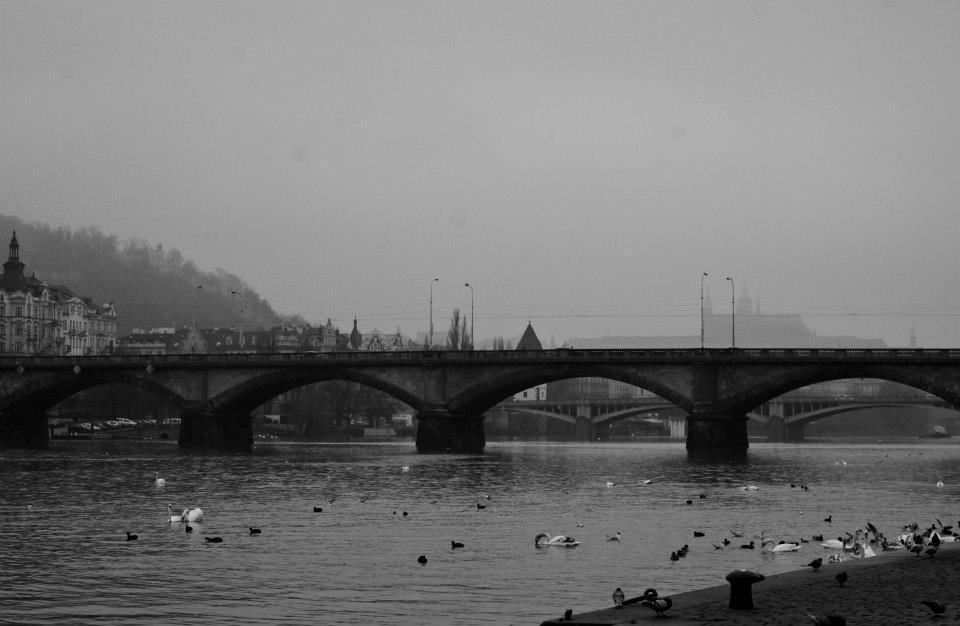 8.Palackého most je šestý most přes celou šíři řeky (ve směru toku) a třetí nejstarší dochovaný most přes Vltavu v Praze. Vznikl v letech 1876–1878 podle projektu Bedřicha Münzbergera a Josefa Reitera pro zpřístupnění rychle rozvíjejícího se průmyslového Smíchova. Provoz na něm byl zahájen 22. prosince 1878. - (Foto: Vladimir Mir)