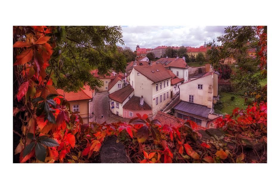 Podzim na Novém Světě -  Foto: Petr Turek
