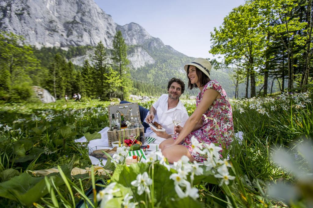 PIknik na Altausseer see - Foto: © Steiermark Tourismus / ikarus.cc