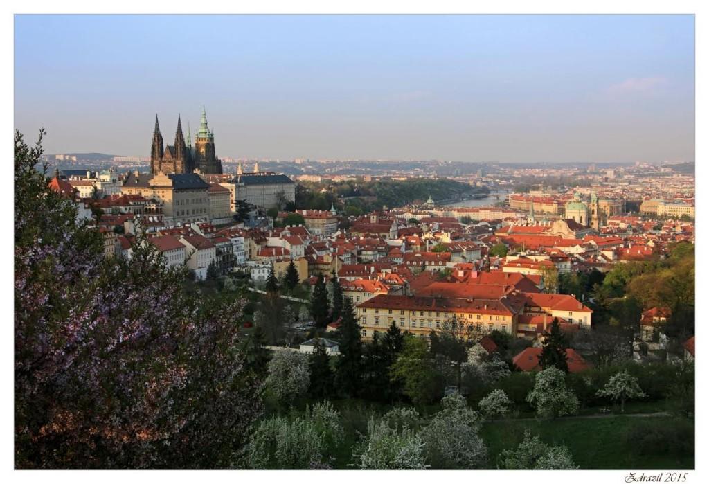Panorama Prahy - v paprscích zapadajícího slunce. Pohled z rozkvetlého Petřína - Foto: Martin Zdražil