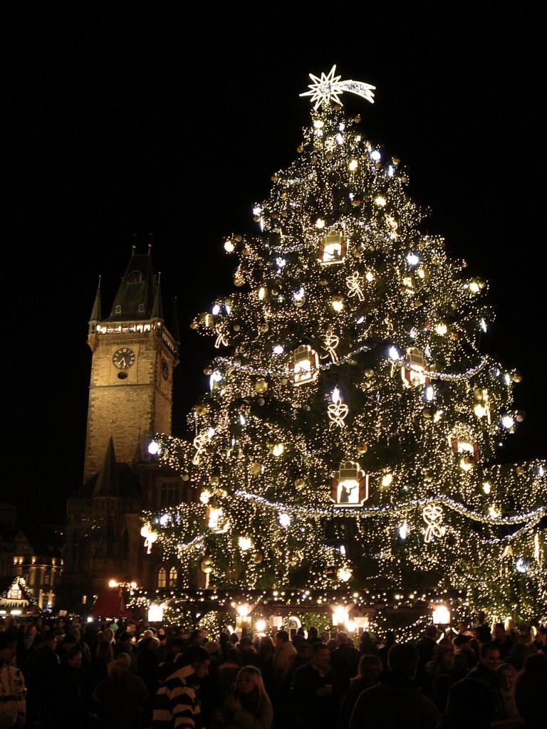Vánoční strom na Staroměstském náměstí - Foto: Martin Dobrovodský