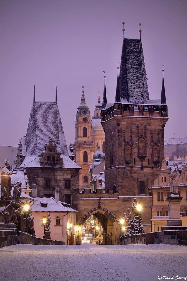 Zima je tu - Foto: David Šedivý
