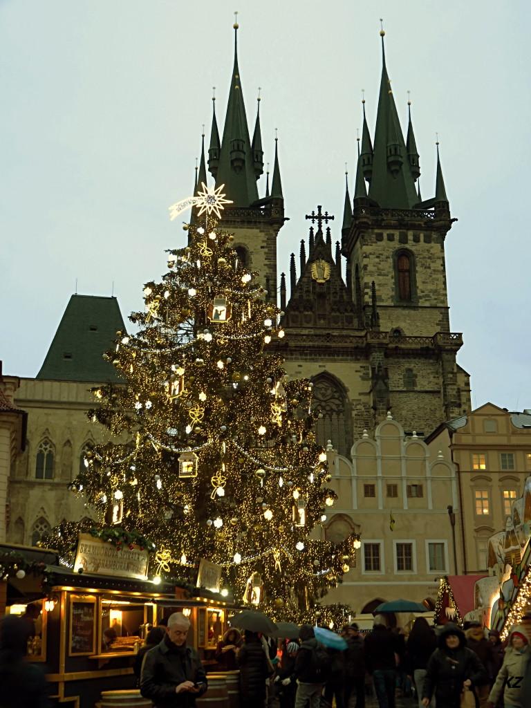 Vánoční strom před Týnským chrámem - Foto: Květa Závadová