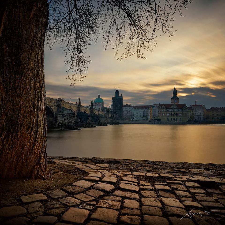 Za stromem - Foto: Marek Kijevský