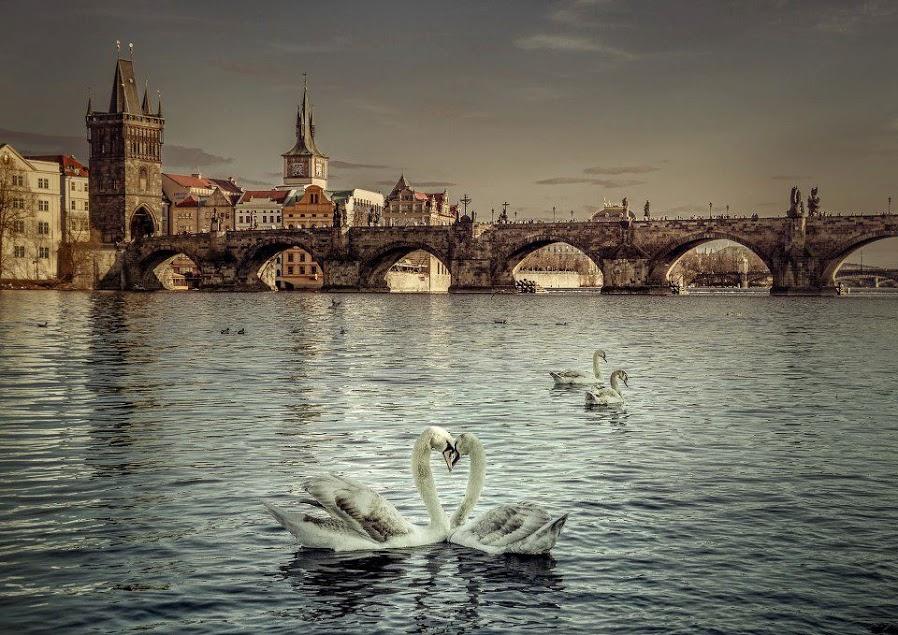 Vltavská romance - Foto: Michal Grosman