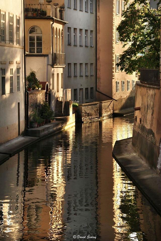 Pražské Benátky - Foto: David Šedivý