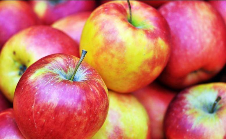 Jablečné slavnosti a festival moštu a cideru