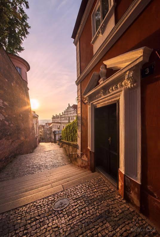 Sluníčko na Zámeckých schodech - Foto: Peter Čech