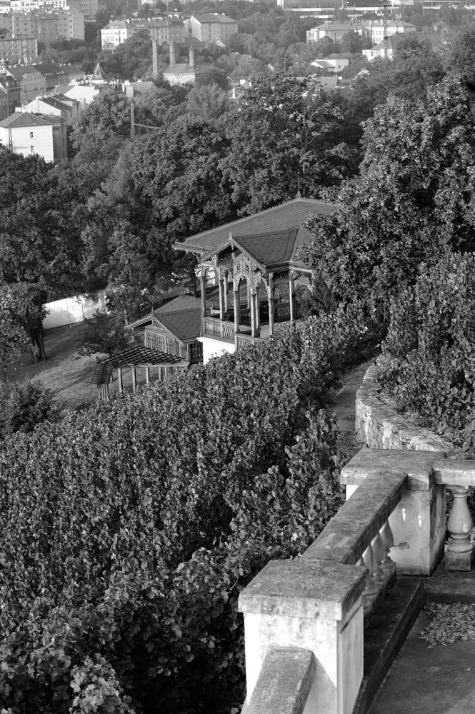 Pražské vinice - Foto: Jiří Chalupa
